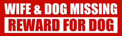 dog-missing